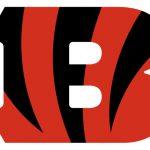 Cincinnati Bengals - Die Geschichte